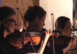 Die Violinen