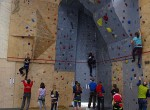 Goethe goes vertical: 8. Hamburger Lead-Einzelmeisterschaften im Schulsportklettern