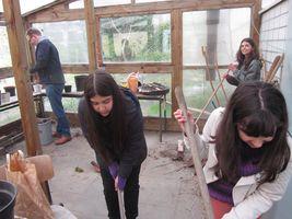 Der NaWi-Forscherclub reaktiviert das Gewächshaus